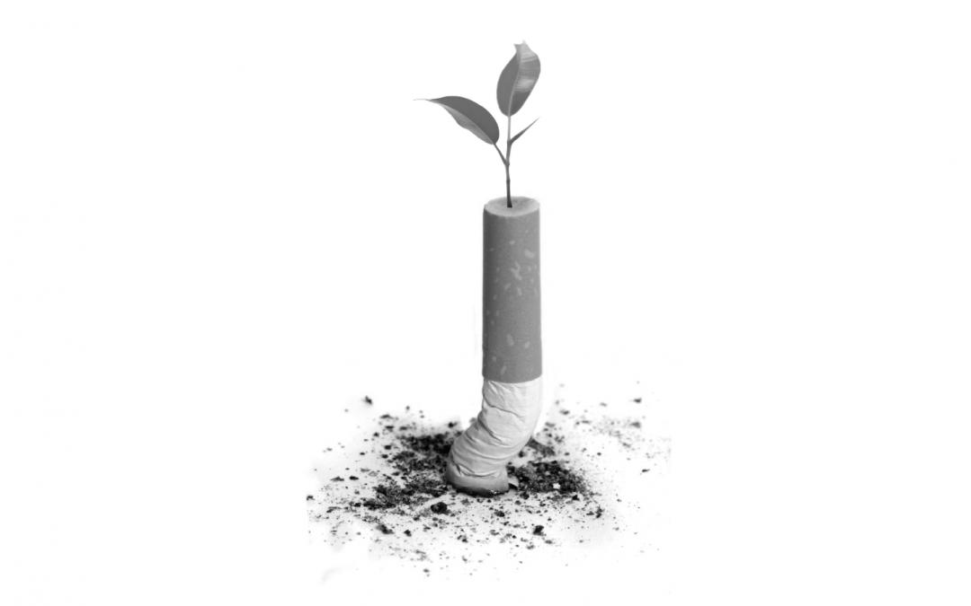 tabaquismo en el medio ambiente