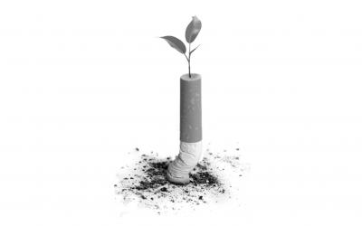 El impacto del tabaquismo en el medio ambiente