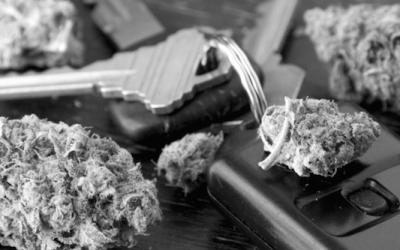 Legalización de Marihuana y sus implicaciones en seguridad vial